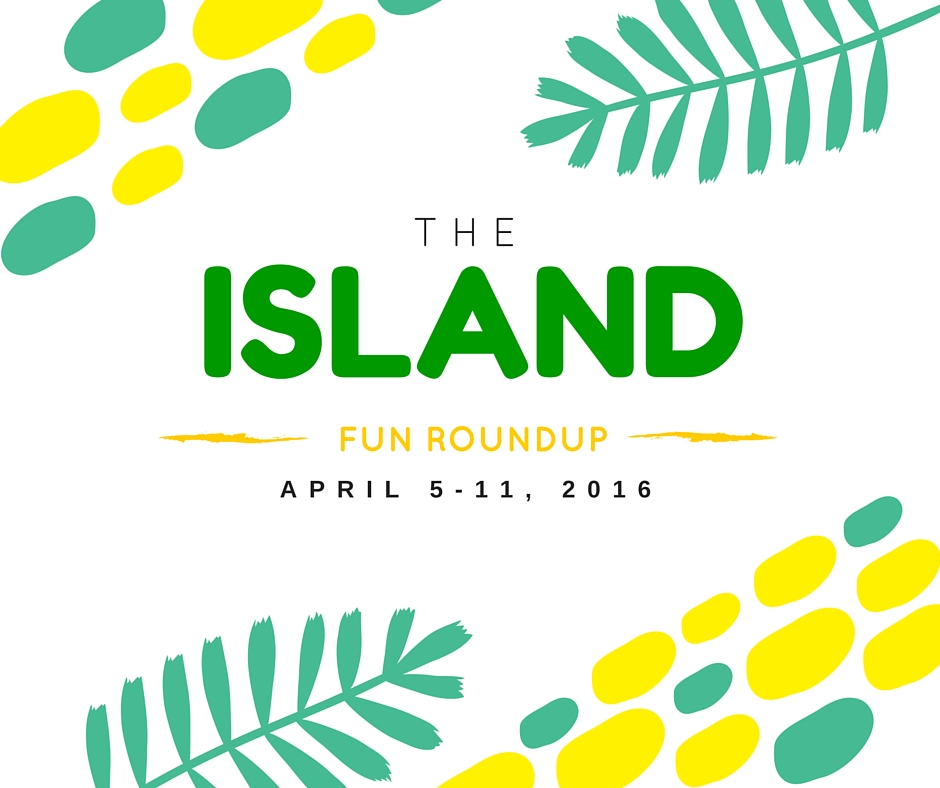 the island fun roundup-2